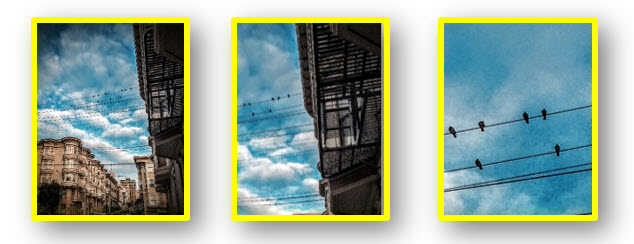 Three photographs. The first is of a San Francisco neighborhood with apartment buildings, fire escapes, and birds. The second photograph is a zoomed in and cropped excerpt of the first photograph, with only the fire escape and birds on power lines in view. The third photograph is a zoomed in and cropped excerpt of the second photograph, only picturing the birds on power lines with a backdrop of blue sky.